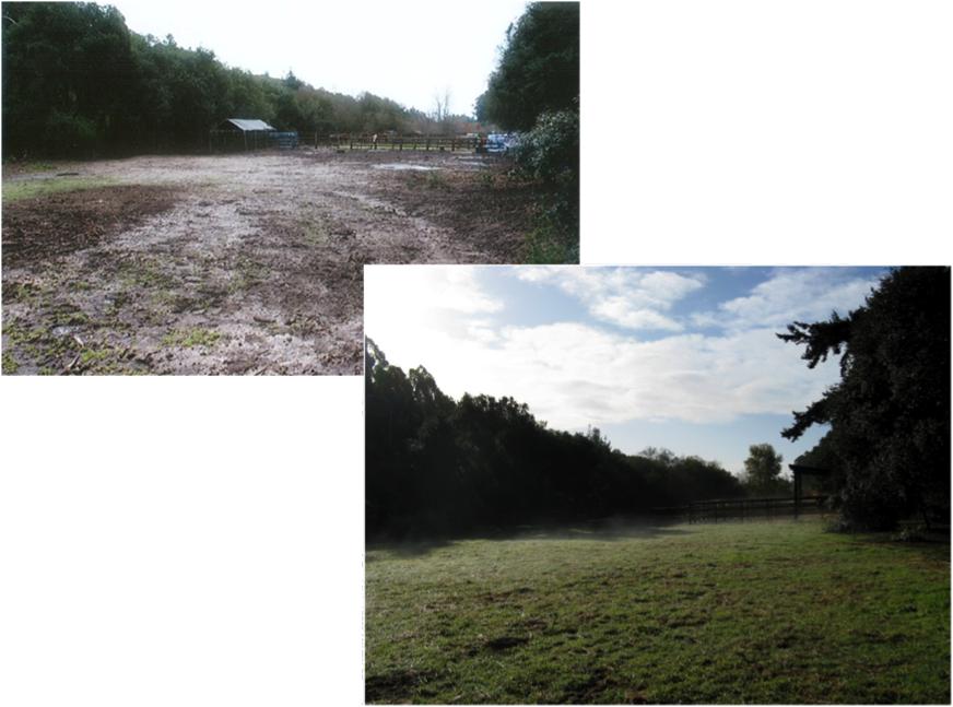 Demonstration Sites Livestock Amp Land